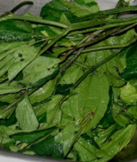 Ugu (Pumpkin leaves)